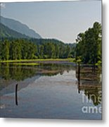 Nicomen Slough 2 Metal Print