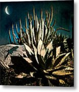Night At The Desert's Edge Metal Print