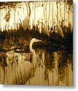 Ninigret Pond Metal Print