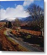Nire Valley Drive, County Waterford Metal Print