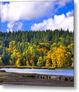 Nisqually Wildlife Refuge P24 Metal Print
