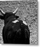 No Bull Metal Print