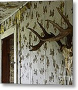 No One Lives Here Metal Print