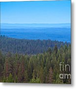 Nordic Forest Metal Print