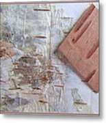 Normand's  Birch Bark  Metal Print