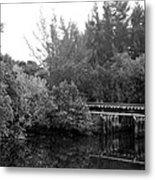 North Fork River Metal Print