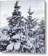 Northumberland, England Snow-covered Metal Print