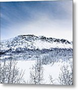 Norwegian Winter Metal Print