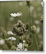 Not Just A Weed Metal Print