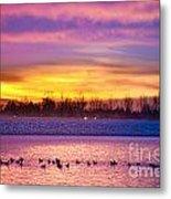 November Lagerman Reservoir Sunrise  Metal Print by James BO  Insogna