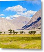 Nubra Valley Ladakh Metal Print