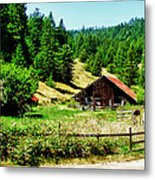 Nw California Country Road Metal Print