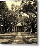 Oak Alley In Black And White Metal Print