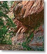 Oak Creek Canyon Walls Metal Print