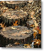Oak Creek Steps Metal Print