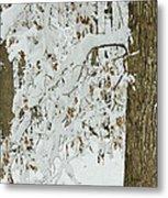 Oak In The Snow Metal Print