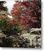 Oak Rock Metal Print