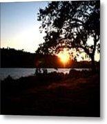 Oak Tree Sunset Metal Print