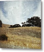 Oak Trees In A California Landscape Metal Print