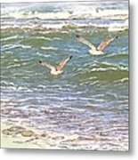 Ocean Seagulls Metal Print by Cindy Wright
