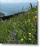 Ocean Wildflowers Metal Print