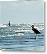 Of Like Mind Metal Print by Barbara Shallue
