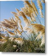 Of Sun And Sky And Wind Metal Print