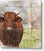 Oh Fence Please Hold Metal Print