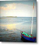 Oh So Bright I Metal Print