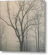 Ohio Winter Solitude Metal Print