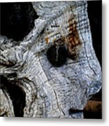 Old Ancient Olive Tree In Spain Metal Print