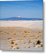 Old Baldy Mountain  Metal Print