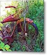 Old Bike And Weeds Metal Print