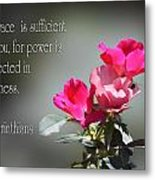 Old Fashion Pink Roses II Cor.12v9 Metal Print by Linda Phelps