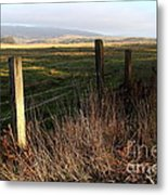 Old Fence And Landscape At Point Reyes California . 7d9968 Metal Print