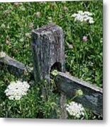 Old Fence And Wildflowers Metal Print