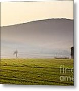 Old House On The Field Metal Print