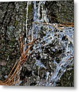 Old Needles And Sap Metal Print