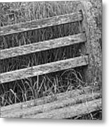 Old Overgrown Bench Metal Print