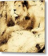 Old Photograph Of A Lion On A Rock Metal Print