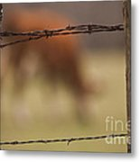 Old Post Fence Metal Print
