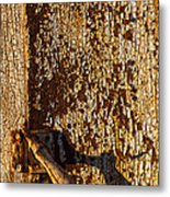 Old Rusty Door Metal Print