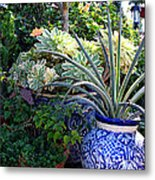 Old Town Potted Cactus Metal Print