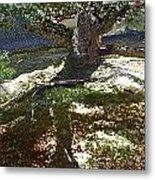Old Tree II Metal Print