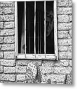 Old Western Jailhouse Window In Black And White Metal Print