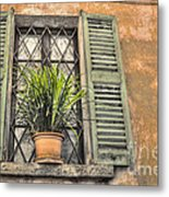 Old Window And A Green Plant Metal Print