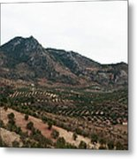 Olive Oil Mountain Metal Print