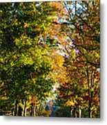 On A Country Road Metal Print