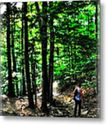 On Our Way Chasing The Eternal Flame At Chestnut Ridge Park Metal Print