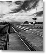 On The Level Metal Print